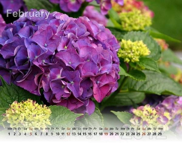 flowers-calendar- (2)