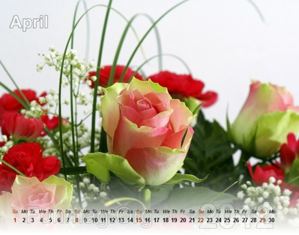flowers-calendar- (4)