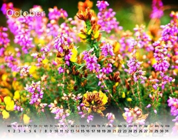 flower-calendar-10