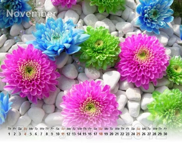 flower-calendar-11