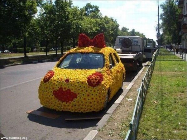 funny-car-photos- (12)