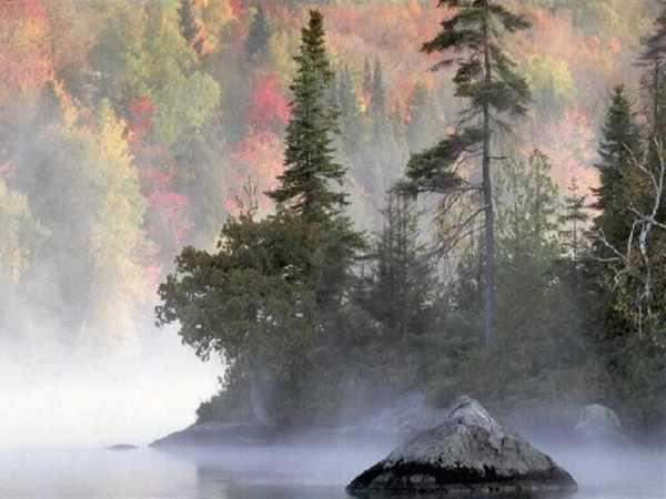 beautiful-nature-wallpapers- (10)