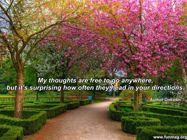 thinking-of-you-quotes- (3)