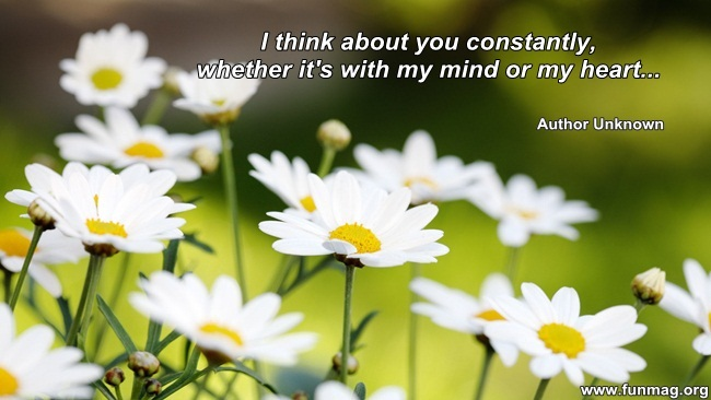 thinking-of-you-quotes- (8)