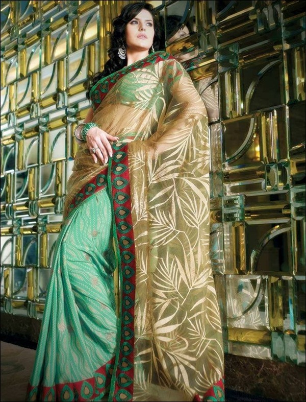 zarine-khan-saree-collection- (23)