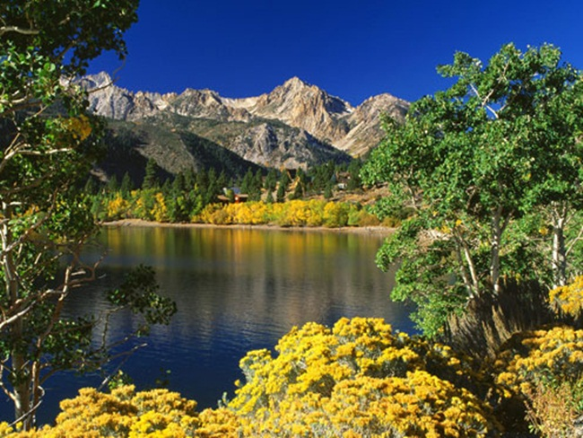 beautiful-nature-views-of-california- (13)