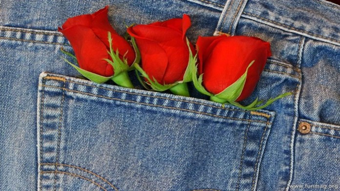 romantic-red-roses-pictures- (3)