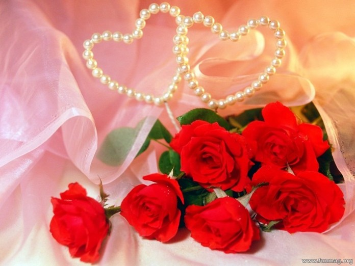 romantic-red-roses-pictures- (33)