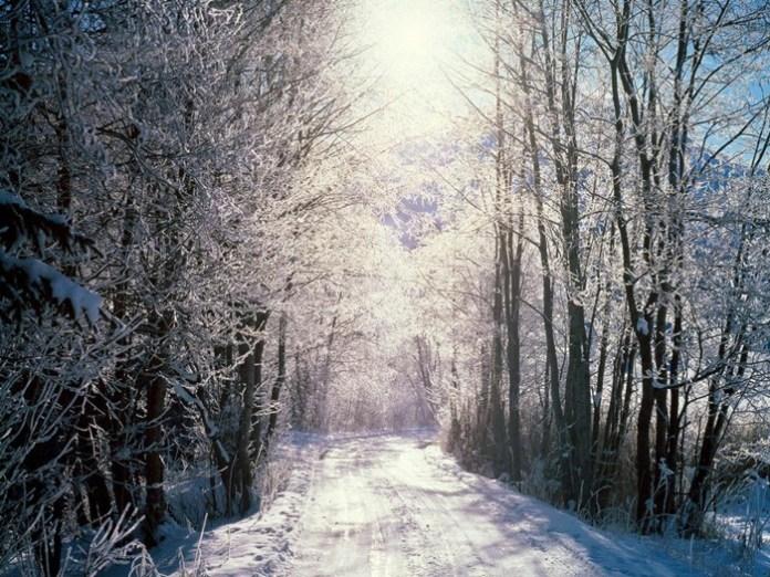beautiful-winter-scenery- (25)