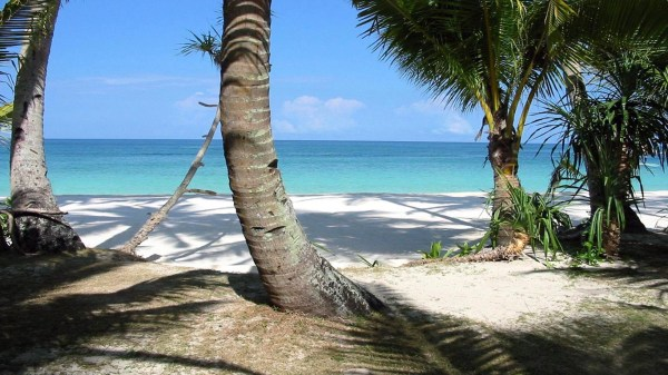 tropical-beach-wallpapers- (15)