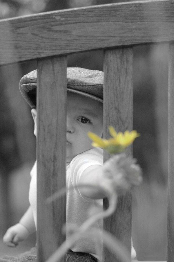 innocent-babies-pictures- (7)