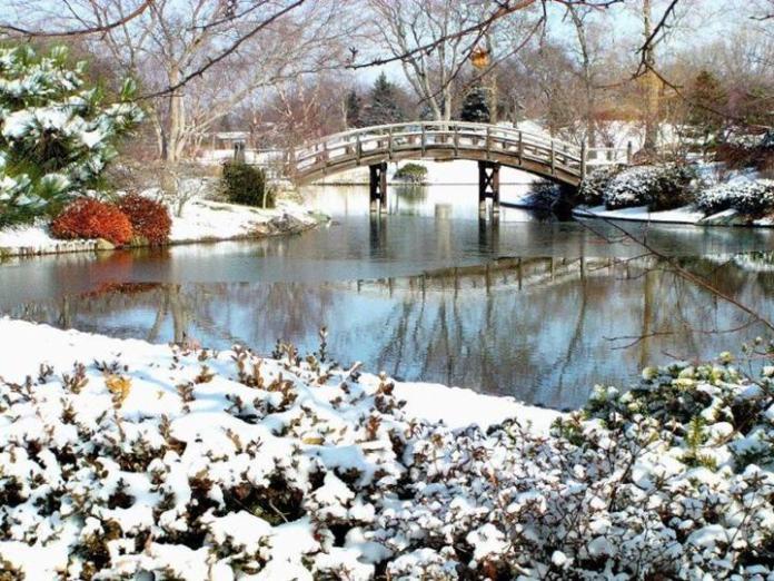 snow-in-autumn- (12)
