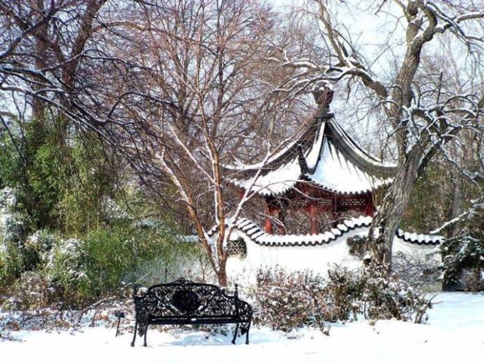 snow-in-autumn- (5)