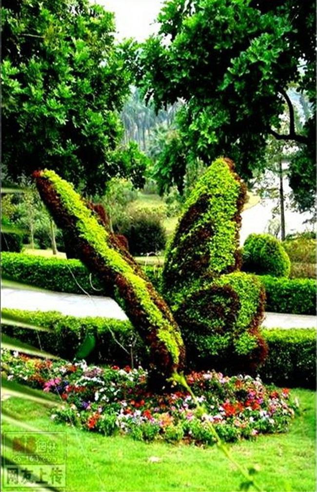 topiary-animals- (16)