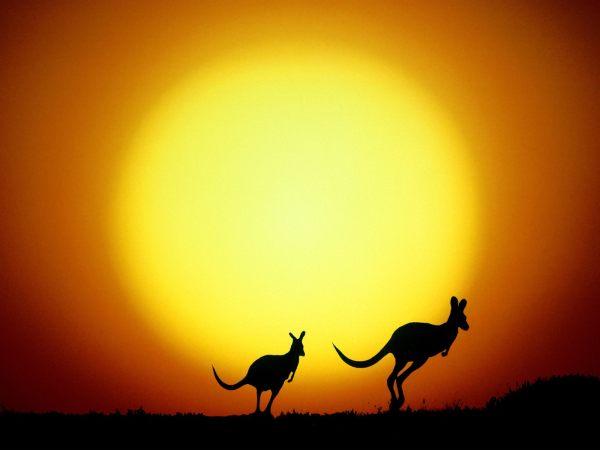 tour-to-australia-17-wallpapers- (1)