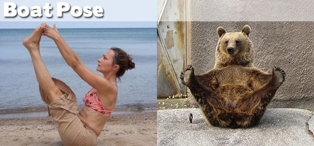 yoga-and-animals- (10)