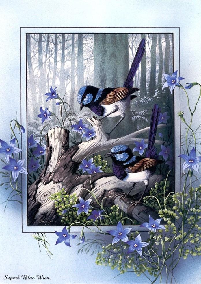 beautiful-birds-paintings- (3)