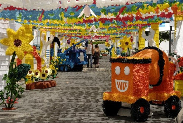 paper-festival-in-portugal- (14)