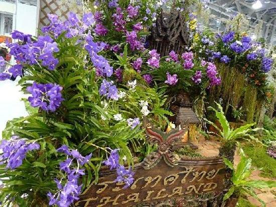 taipei-flora-exposition- (1)