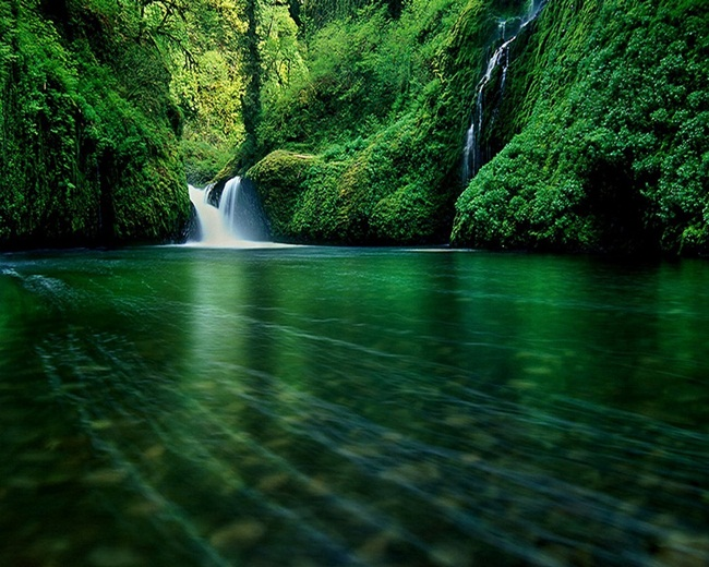 beautiful-green-nature- (9)