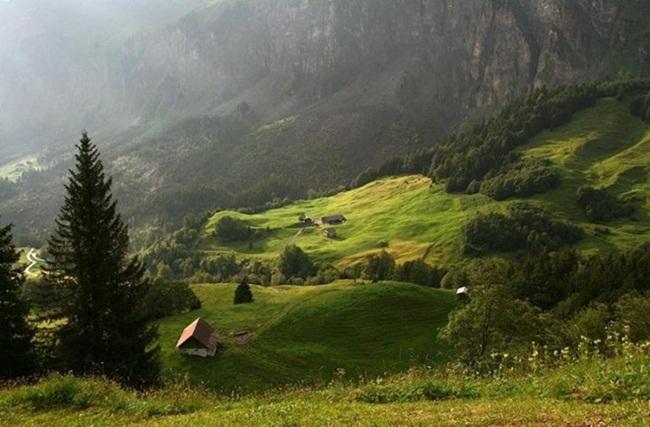 beautiful-green-nature- (15)