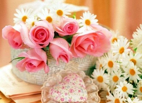 beautiful-flower-photos- (13)