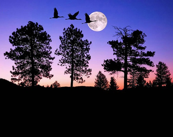 beautiful-moon-pictures- (2)