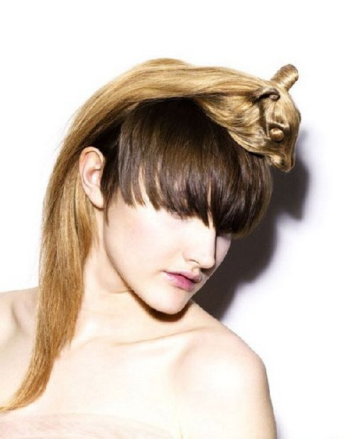crazy-animal-hairstyle- (11)