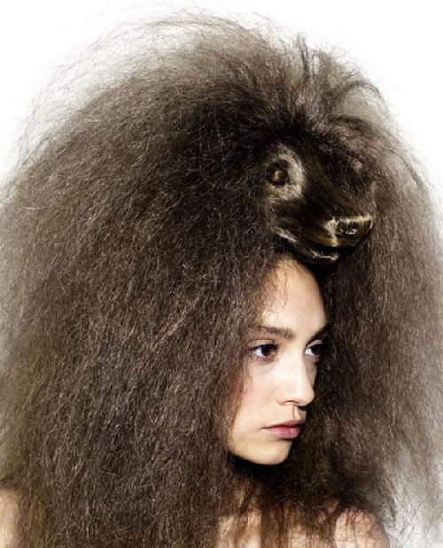 crazy-animal-hairstyle- (13)