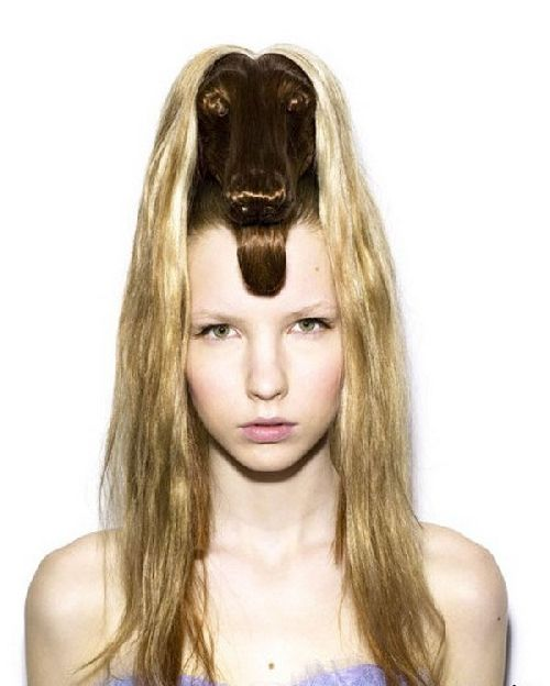 crazy-animal-hairstyle- (2)