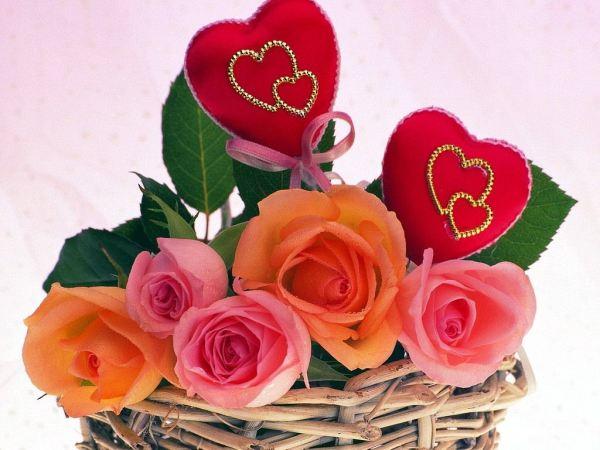 beautiful-roses-wallpapers-20-photos- (10)