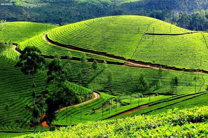 beautiful-india-photos- (2)