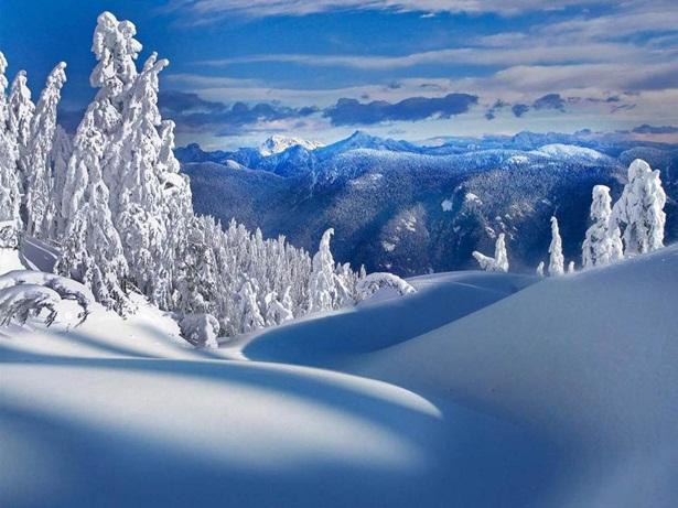 25-winter-photos- (17)