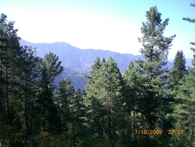 siri-paye-and-shogran-valley-pakistan- (34)