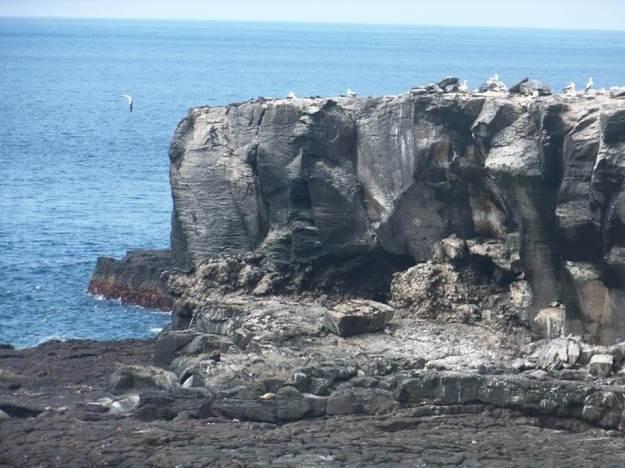 galapagos-island-45-photos- (27)