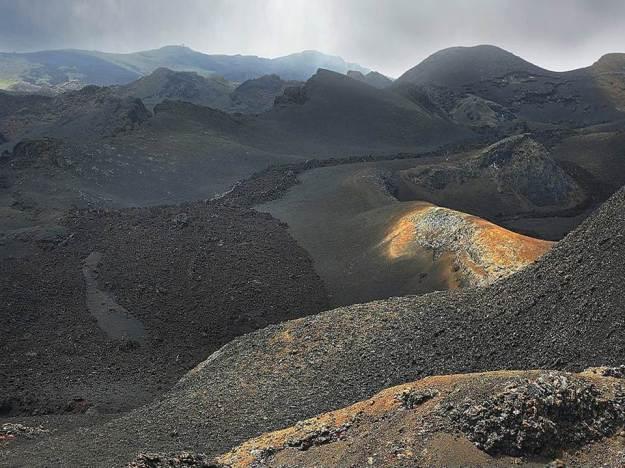 galapagos-island-45-photos- (3)