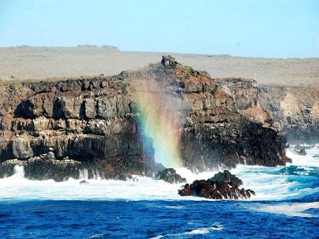 galapagos-island-45-photos- (5)