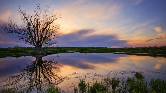 nature-reflections-photos- (17)