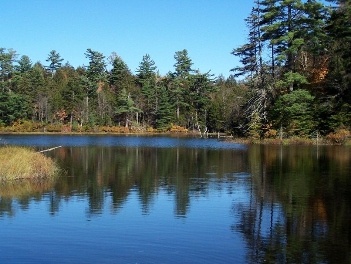 nature-reflections-photos- (25)