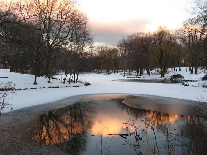 nature-reflections-photos- (7)