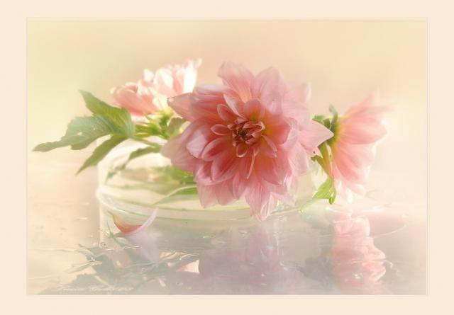 flowers-paintings- (22)