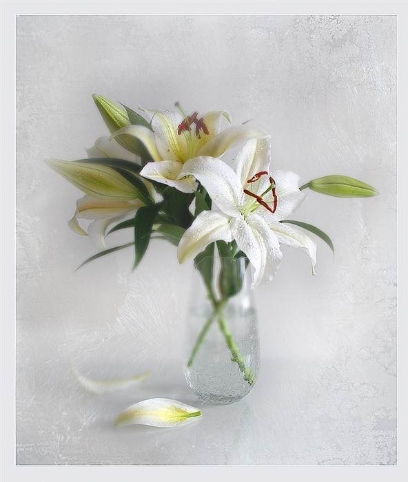 flowers-paintings- (3)