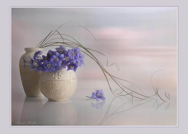 flowers-paintings- (6)