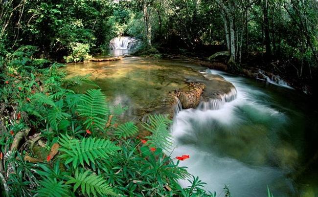 natural-waterfalls-18-photos- (18)