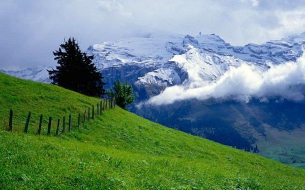 beautiful-nature-wallpapers-15-photos- (1)