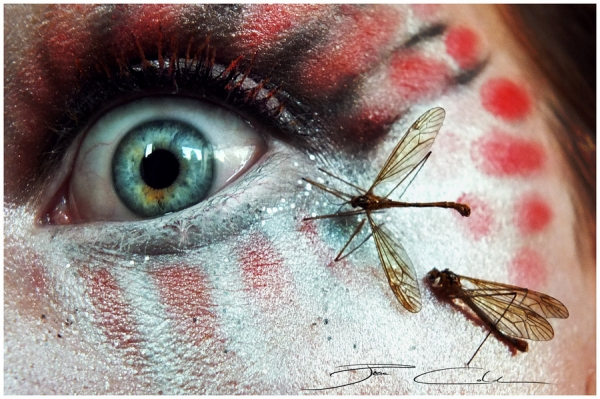 eye-makeup-art- (6)