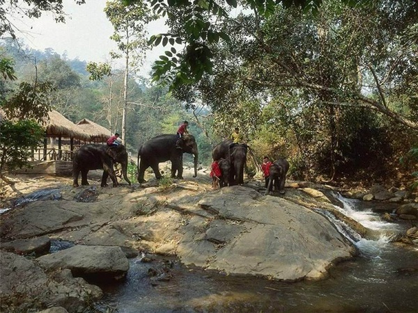 tour-of-thailand-41-pictures- (15)