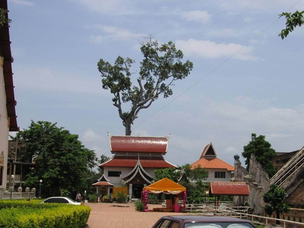tour-of-thailand-41-pictures- (6)