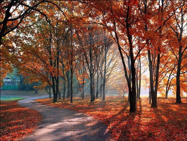 beautiful-autumn-20-pictures- (18)