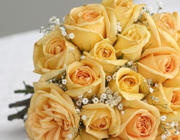 best-roses-26-photos- (16)